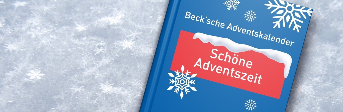 20201201_adventskalender_banner_small.jpg